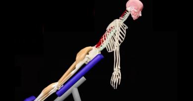 Anatomía de la espina dorsal, análisis de ejercicios (video con animación)