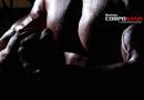 Guía para aumentar la masa muscular