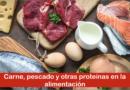 Carne, pescado y otras proteínas en la alimentación