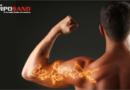 ¿Por qué me arden los músculos al hacer ejercicio?