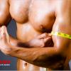 Razones por las que estás perdiendo músculo